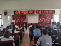 山嘴子镇农村直播电商培训班(实验班)在山嘴子镇政府会议室开班